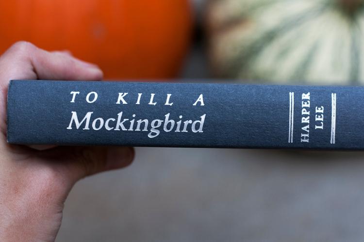 tokillamockingbirdbook