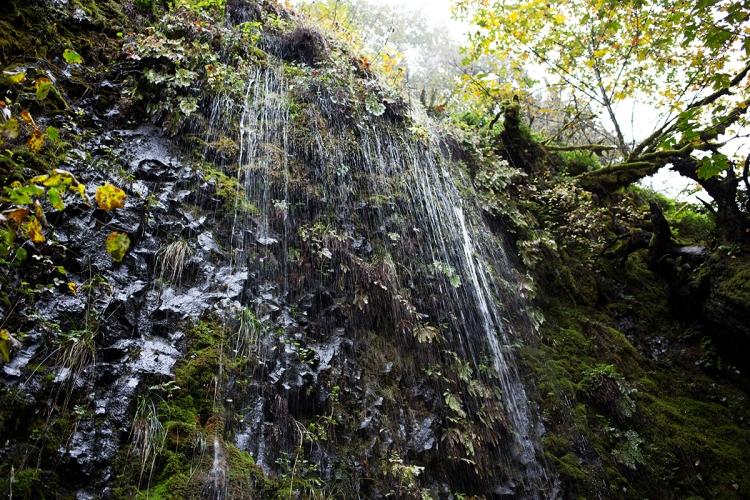 triplefallshikeportlandwaterfall11web