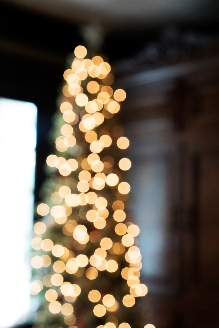 blurrychristmastree