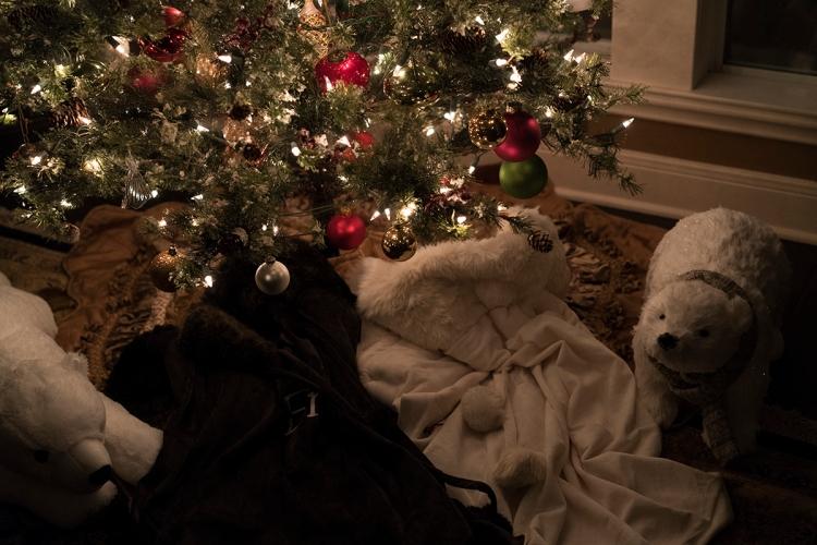 christmastreepolarbears