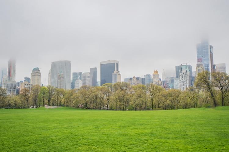 newyorkcityspringtimepark