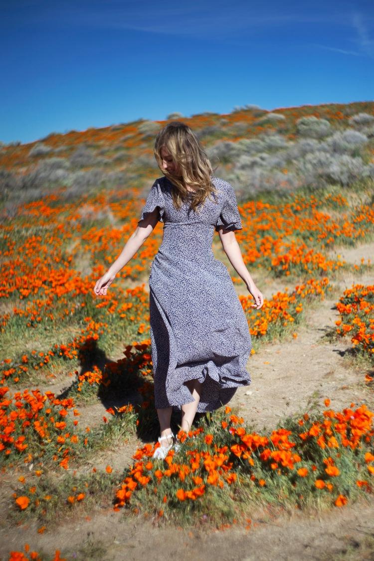 springpoppiescalifornia1