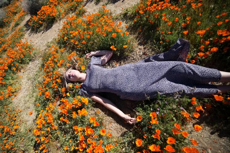 springpoppiescalifornia11