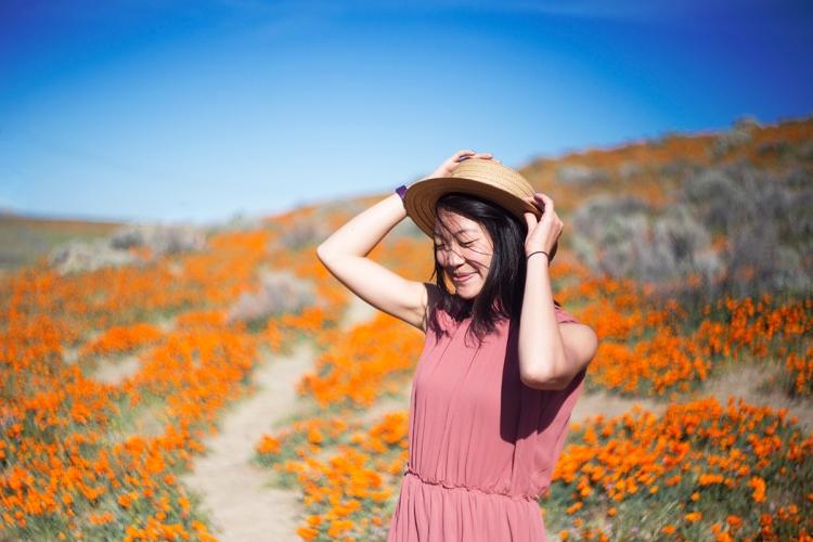 springpoppiescalifornia14