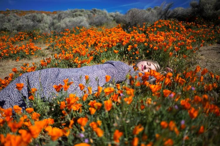 springpoppiescalifornia3