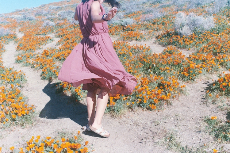 Twirling in Poppy Fields